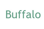 Buffalo DVSM-PTS58U3