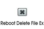 Reboot Delete File Ex